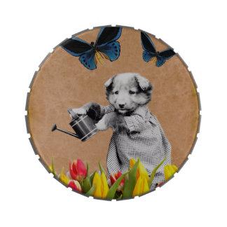 El perrito del vintage florece la mariposa latas de caramelos