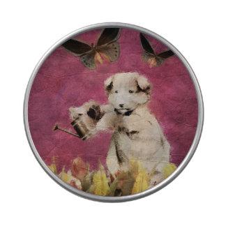 El perrito del vintage florece rosa de la mariposa latas de caramelos