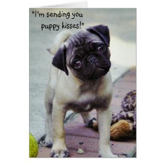 El perrito dulce consigue la tarjeta de felicitaci