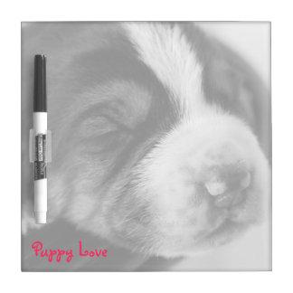 El perrito el dormir cuadrado seca al tablero del  pizarra blanca