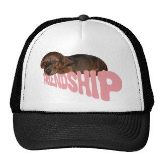 El perrito el perro de la amistad es el mejor amig gorros
