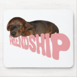 El perrito/el perro de la amistad es el mejor amig tapete de ratones