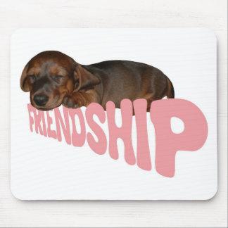 El perrito/el perro de la amistad es el mejor tapete de ratón