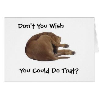 El perrito lame la tarjeta