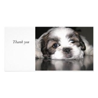 el perrito más lindo nunca, gracias tarjeta fotografica personalizada