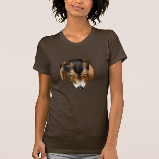 El perrito observa la camiseta playeras