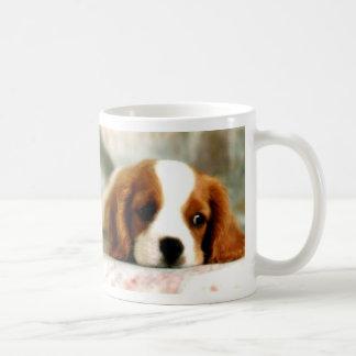 El perrito observa la taza