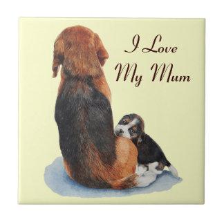 el perrito y la momia lindos del beagle persiguen  tejas  cerámicas