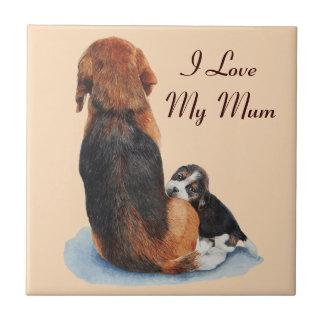 el perrito y la momia lindos del beagle persiguen azulejos ceramicos