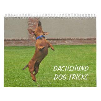 El perro 2012 del Dachshund engaña el calendario