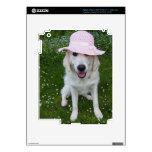El perro blanco más lindo en una plantilla del peg pegatina skin para iPad 3
