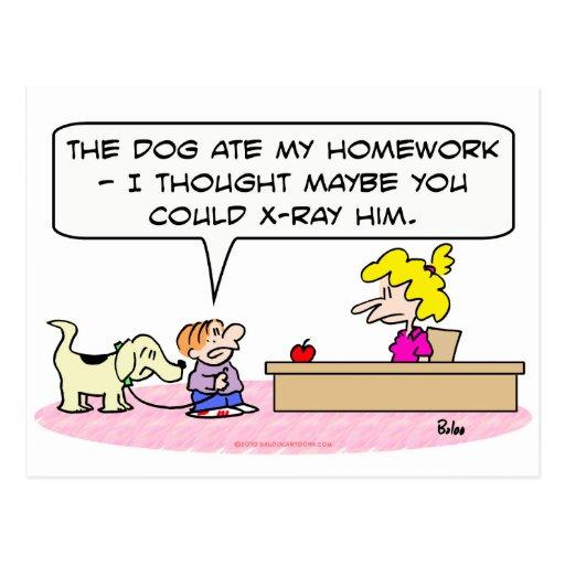 el perro comió la radiografía de la preparación postal