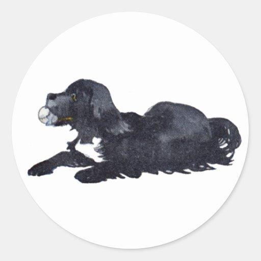 El perro con la bola quiere jugar búsqueda pegatina redonda