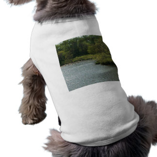 El perro de agua playera sin mangas para perro
