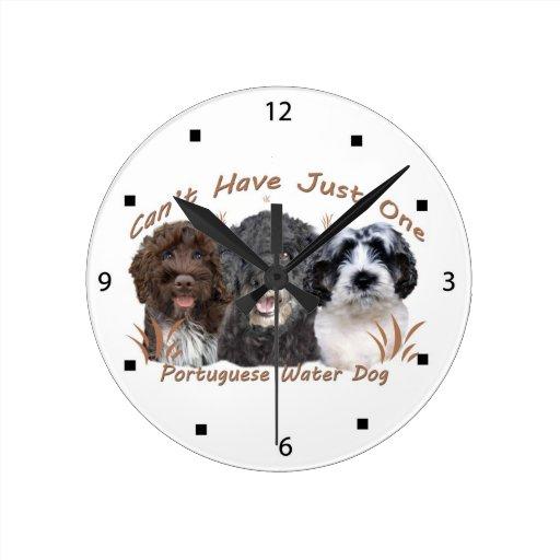 El perro de agua portugués no puede tener apenas u relojes de pared