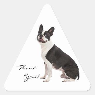 El perro de Boston Terrier le agradece los Pegatina Triangular