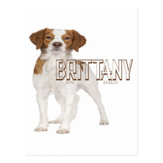 El perro de Bretaña cría el ブルターニュ犬の品種 Postal