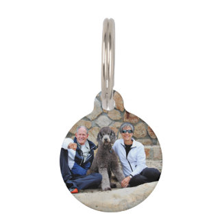 El perro de caniche estándar gris goza de la playa placa para mascotas