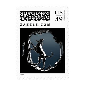 El perro de caza sella sellos del amante del perro