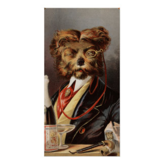 El perro de la clase alta posters