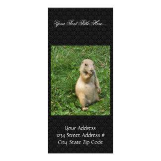 El perro de las praderas masculino admite la escen tarjetas publicitarias personalizadas