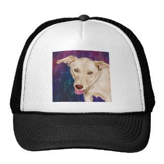 El perro de oro con una fresa tiene gusto de la gorra