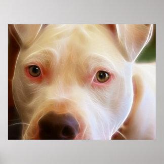 El perro de perrito de Pitbull observa fotografía  Póster