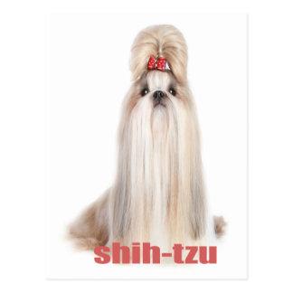 el perro de shih-tzu cría el シーズー - シーズー犬の品種 postal