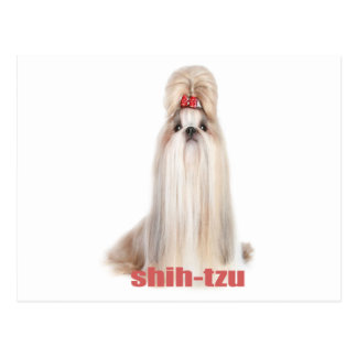 el perro de shih-tzu cría el シーズー - シーズー犬の品種 tarjetas postales