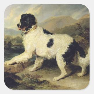 El perro de Terranova llamó a Lion, 1824 (el Calcomania Cuadrada Personalizada