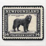 El perro de Terranova sella los regalos Alfombrillas De Ratón