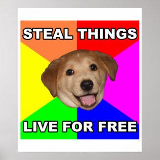 El perro del consejo roba cosas, vive gratis poster