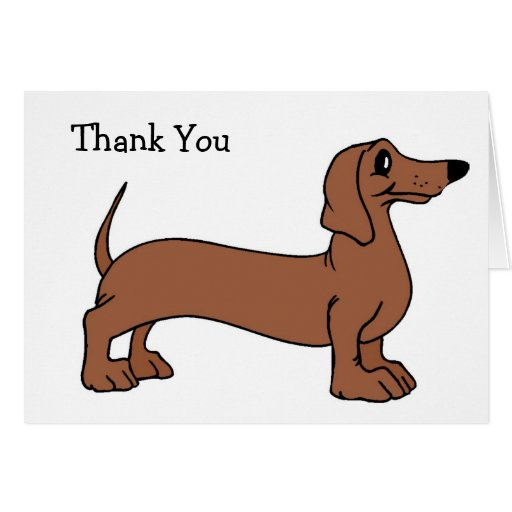 El perro del Dachshund le agradece las tarjetas