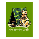 El perro del golden retriever come el perro postal