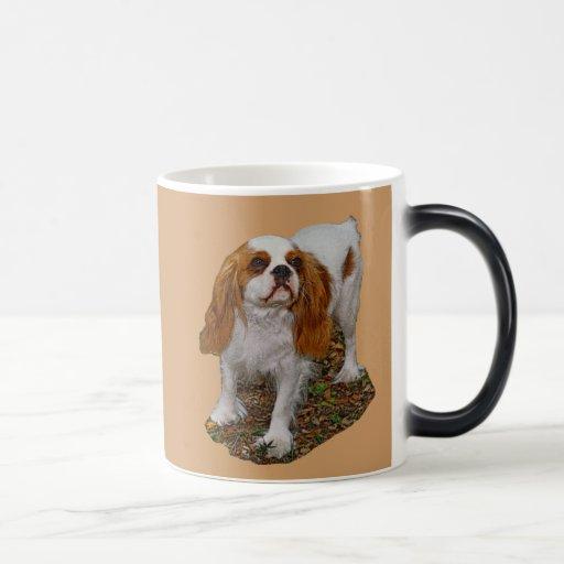 El perro del perro de aguas Morph la taza