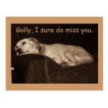El perro esquimal amarillo Golly I del hoyo del la Postal