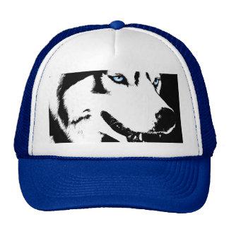 El perro esquimal capsula el regalo de los gorras
