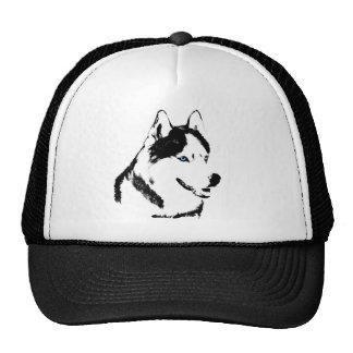 El perro esquimal capsula los regalos de los gorra