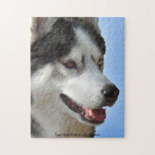 El perro esquimal observa rompecabezas personaliza