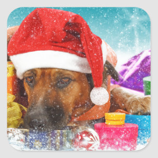 El perro está esperando navidad pegatina cuadrada