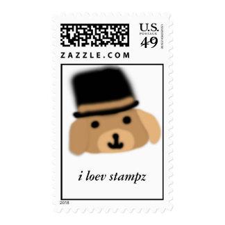 El perro feliz del gorra ama sellos