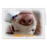 El perro feliz le agradece felicitacion