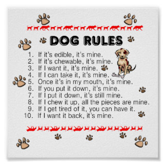 El perro gobierna el poster