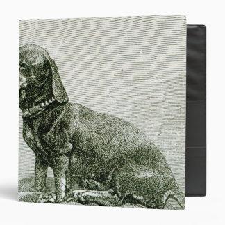 El perro Jacob