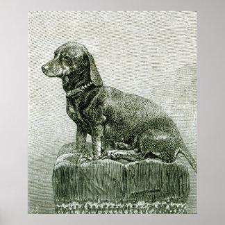 El perro Jacob Poster