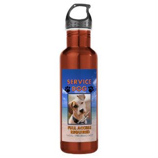 El perro K9 del servicio de la playa apaga
