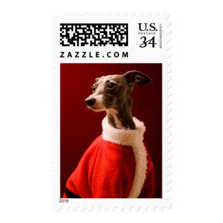 El perro lleva la ropa de la Navidad del padre Sellos Postales
