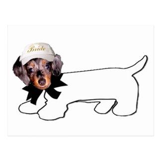 El perro manuscrito de la novia postales