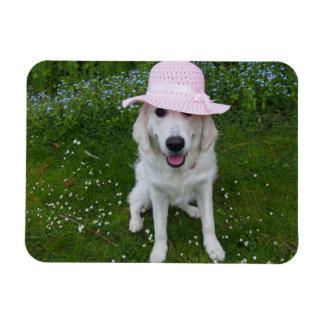 el perro más dulce en el mundo imán de vinilo
