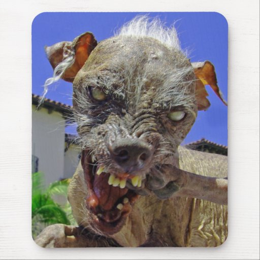 El perro más feo del mundo tapetes de ratones